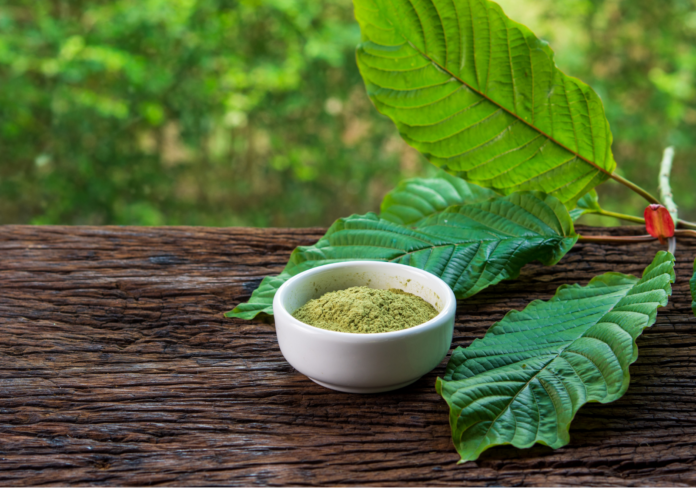4 Important Things You Must Consider Before Buying Green Hulu Kapuas