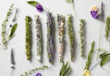 Everything You Must Know About Smudge Sticks